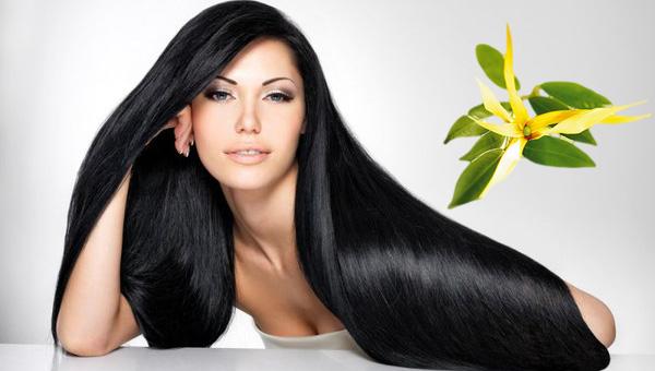 Иланг иланг для волос